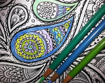 KPM Doodles Coloring page Paisly1