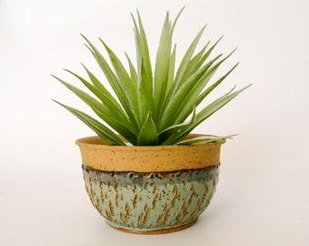 Succulent Pot  - Ceramic Planter - Cactus Planter - Wheel Thrown Pottery - Stoneware