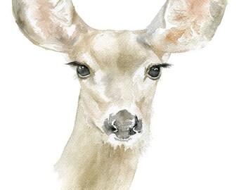 Doe Deer Watercolor Painting 8 x 10 - 8.5x11 - Giclee Print Reproduction Woodland Art Nursery Decor