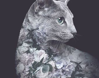 Silver Cat Flower Portrait – Faunascapes Art Print by WhatWeDo