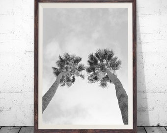 Palm Tree Print, Palm Print, Palm Tree Photography, Black and White, Printable Palm, Printable Palm Tree, Tropical Wall Art, Tropical Decor