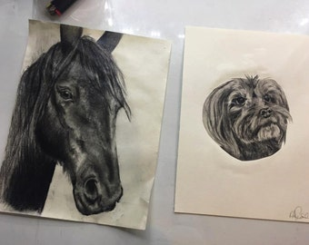 Personalized Hand Drawn Pet Portraits