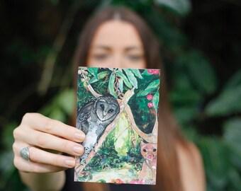 Greeting Card C6 Card & envelope. Birds of the Big Scrub series - Sooty owl