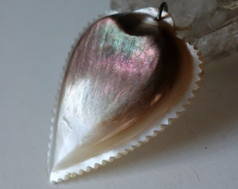 Victorian Carved Shell Heart Pendant