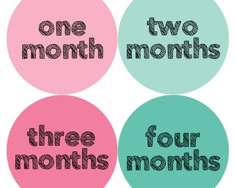 Monthly Baby Stickers Baby Month Stickers Baby Girl Monthly Shirt Stickers Monthly Baby Sticker Girl Baby Shower Photo Prop Milestone 815