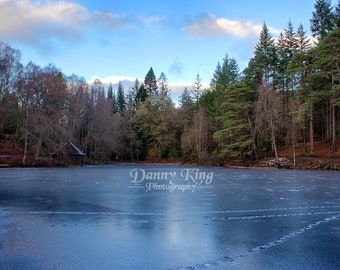 Icy Pond of Tay Forest