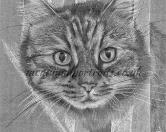 Cat portrait, Pet drawings, pet cat art, cat portrait print, animal art portraits, cat print, Christmas, birthday, cat lover gift, cat owner