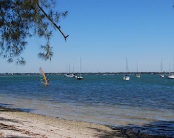Sail Boats on Sarasota Bay