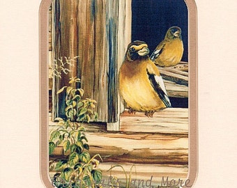 PRINT - SPECIAL MAT: double mat special cut, birds, evening grosbeak, wings, feathers, nature, old cabin, window, wildlife,