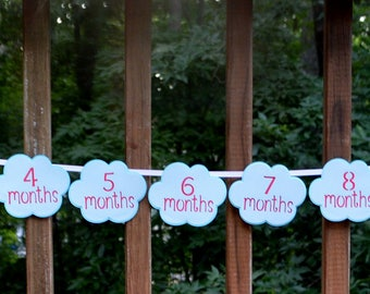 Airplane Birthday First Year Photo Banner Time Flies Birthday Banner Vintage Biplane First Birthday Decoration Adjustable Plane & Clouds