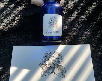 Laszlo - Handmade Perfume 10ml - *HIGHLY FAVOURED*