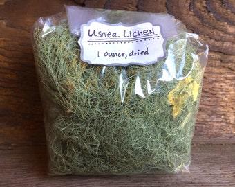 Usnea Lichen, wild-harvested