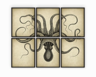 Octopus Wall Art Poster Set Of 6 - Octopus Ink Drawing Art Print - Octopus Poster - Octopus Wall Art - Marine Biology - AB626