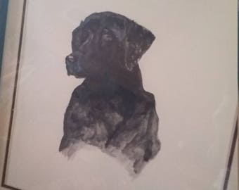 Beautiful Vintage Labrador Dog Painting Water Color
