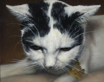 Custom Pet Portrait - painting, cat art, gift for cat lovers, cat painting