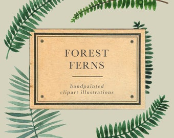 Forest Fern watercolor clipart, wedding clipart, invitation clipart, handpainted illustration