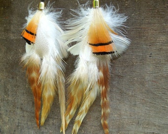 Bright summer feathers
