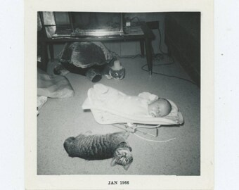 "Vintage Snapshot Photo: ""Gene & Tabby"" [Plus Turtle] 1966[81642]"