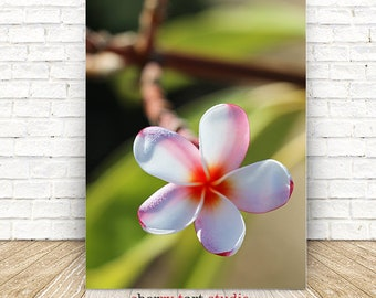 Plumeria, Flower Photography, Botanical Print, Printable Wall Art, Tropical  Decor, Digital Download, Flowers and Nature, Tropical Coastal