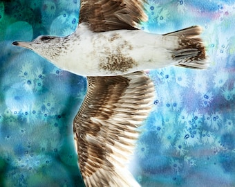 Bird Art Print, Watercolor Art, Sea Gull Print, Nature Art, Bird Art, Nature Decor, Bird Decor, Seagull, Bird Photography, Large Wall Art