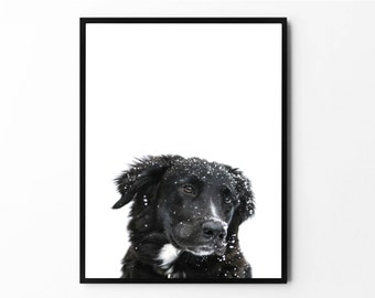 Dog Art, Dog Print, Nursery Animal, Wall Art, Nursery Decor, Dog Poster, Dog Photography, Dog Photo, Animal Poster, Animal Print, Nursery