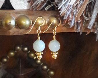 Western Elegance earrings