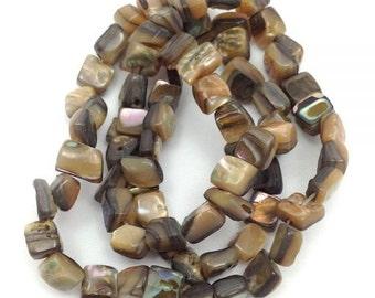 Paua shells, 6mm, rectangular pieces, 1 beach