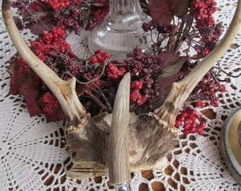 SALE Deer Antler Mount, Rustic Cabin Decor, Deer Antler Razor Handle Deer Spike Horn Antler Mount to Wall Hanging Hunting Lodge decor