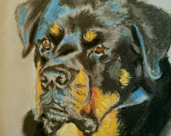 Dog portrait commissions.