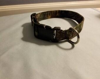 Camo dog collar 16-20 Inch