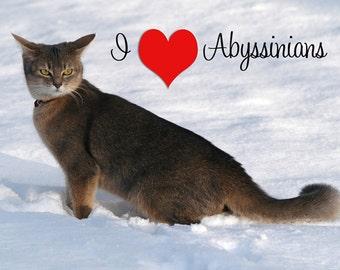 I Love Abyssinian Cats Fridge Magnet 7cm by 4.5cm,