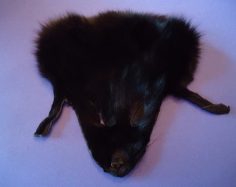 Black Fox Face Fur - Dyed