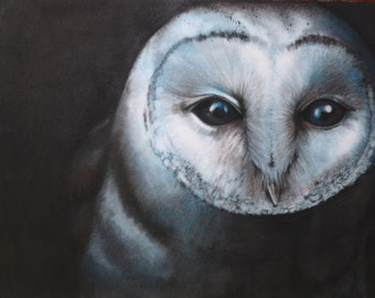 Night Owl (print)