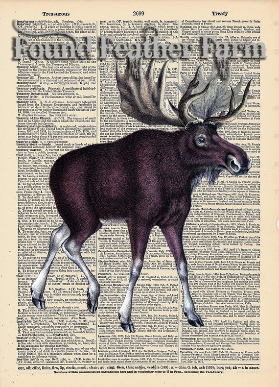 """Vintage Antique Dictionary Page with Antique Print """"Moose"""""""
