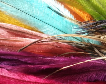 200 emu feathers, feather hair extensions, feather earrings