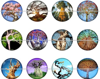Tree Magnets Pins Gift Sets Party Favors Wedding Favors Nature Lovers Gift
