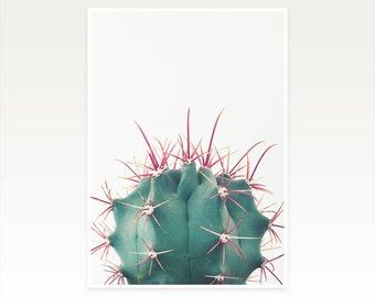 CLEARANCE SALE! Cactus Print, Cacti Art - Ferocactus