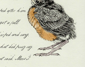 2 - Baby Robin Sketchbook Poem Card