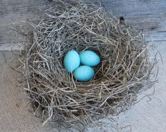 Bird Nest Realistic with Handmade Turquoise Robin's Eggs