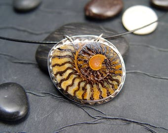 Ammonite FOSSIL Pendant Necklace Jewelry Specimen REDUCED NOW
