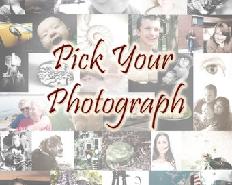 Art Photography Wall Art Home Decor Photography Photographic Art - Any Size  Matte Art Print - Art Photography by Sarah McTernen
