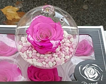 comment rendre une rose ternelle tige de la rose stabilis en vert with comment rendre une rose. Black Bedroom Furniture Sets. Home Design Ideas