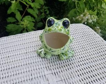 Gentil Ceramic Frog Scrubby Holder, Ceramic Frog, Frog Decor, Kitchen Frog, Frog  Scrubby, Marbled, Kitchen Decor, Patio Decor, Hen N Chicks Frog