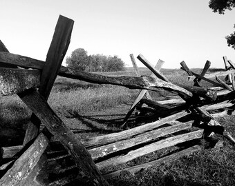 Battle of Perryville Landscape - Black and White Photo