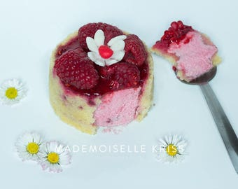 Framboisier (Food photography Fine Art)