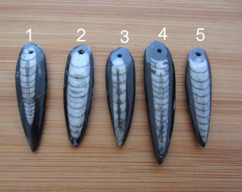 Pick your Orthoceras Fossil Bead Pendant ,Sea Creature, Man Jewelry S6623