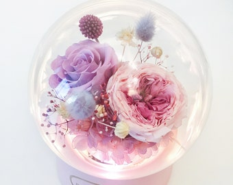 Preserved Rose in Music Ball