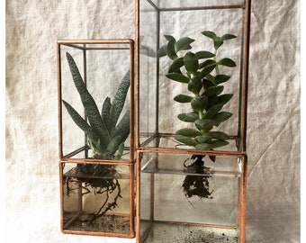 Indoor garden etsy hydroponic terrarium large size hydroponic glass box for succulents easy roots system hydroponic workwithnaturefo