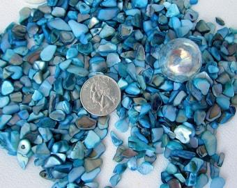Crushed Aqua Seashell, Beach Wedding Decor, Crushed Shell, Shell Pieces, Aqua Shell for Nautical Decor, Coastal Beach Jewelry - 1LB