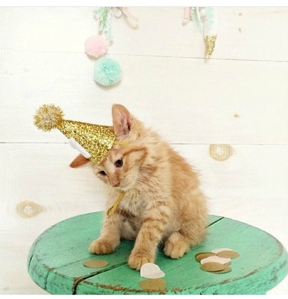Cat Party Hat || Kitty Birthday || Animal Hat || Dog Crown || Busters Party Shop